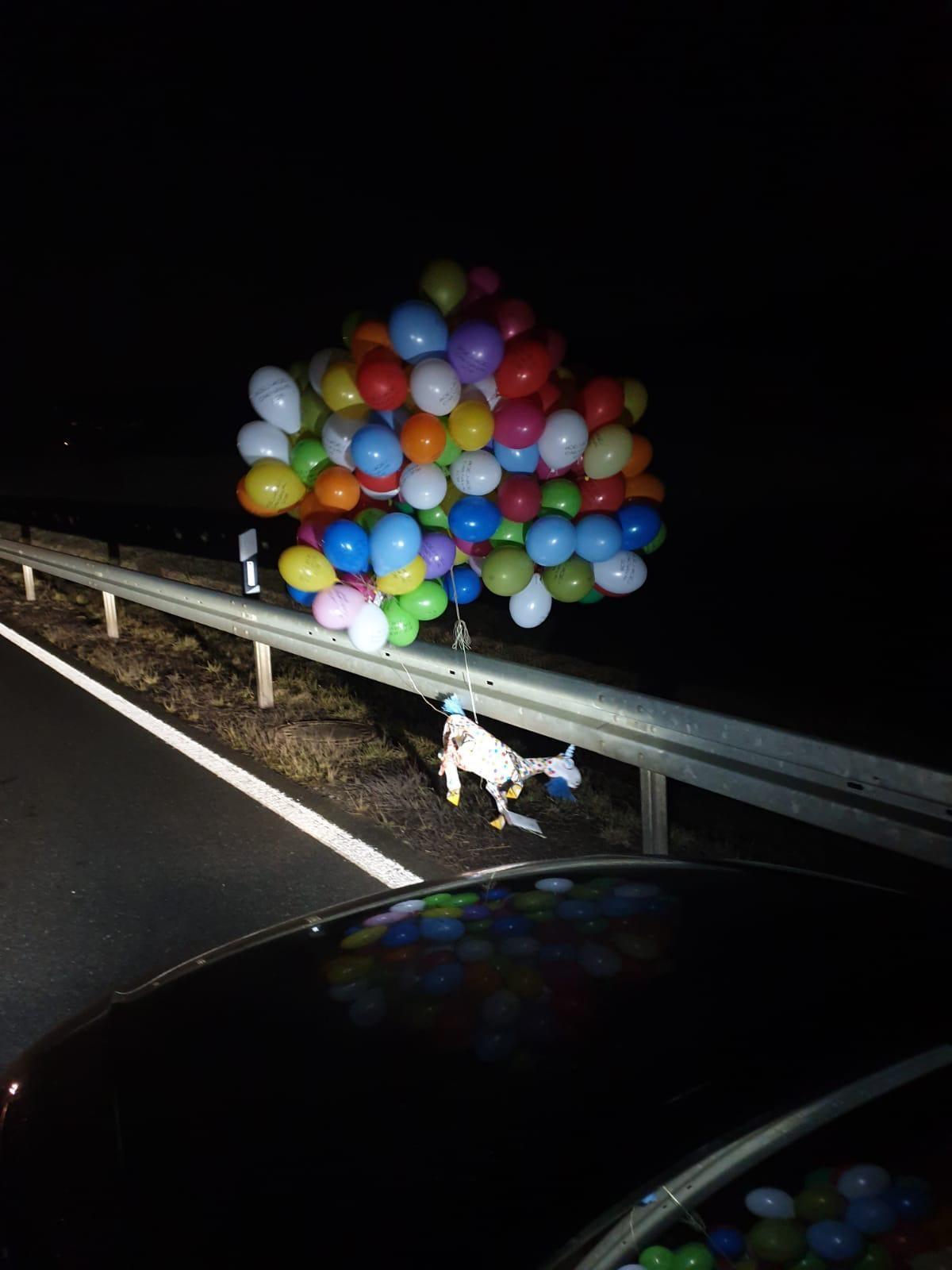 HOEJ-geit Schinveld landde afgelopen maart op rijdende auto - L1 Radio en TV