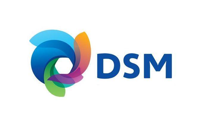 Dsm Keukens Geschiedenis : Nieuw logo voor DSM L1