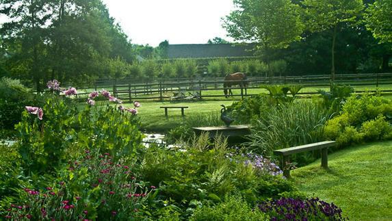 Vaste Planten Tuin : Vaste planten in een onderhoudsarme tuin