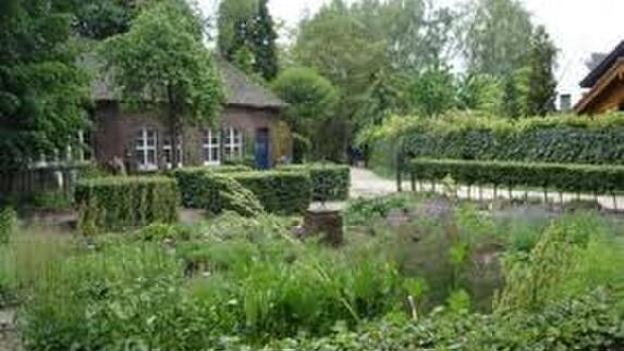 Botanische Tuin Kerkrade : Kunstwerken gestolen uit botanische tuin kerkrade l
